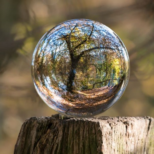 Glass ball reflecting world around it