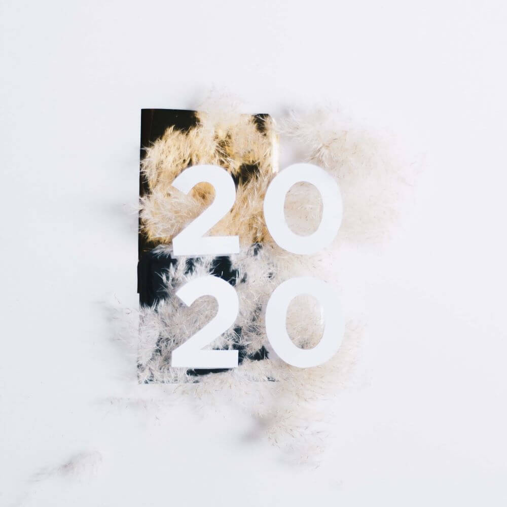 Number 2020 on a background decorated with feathers.